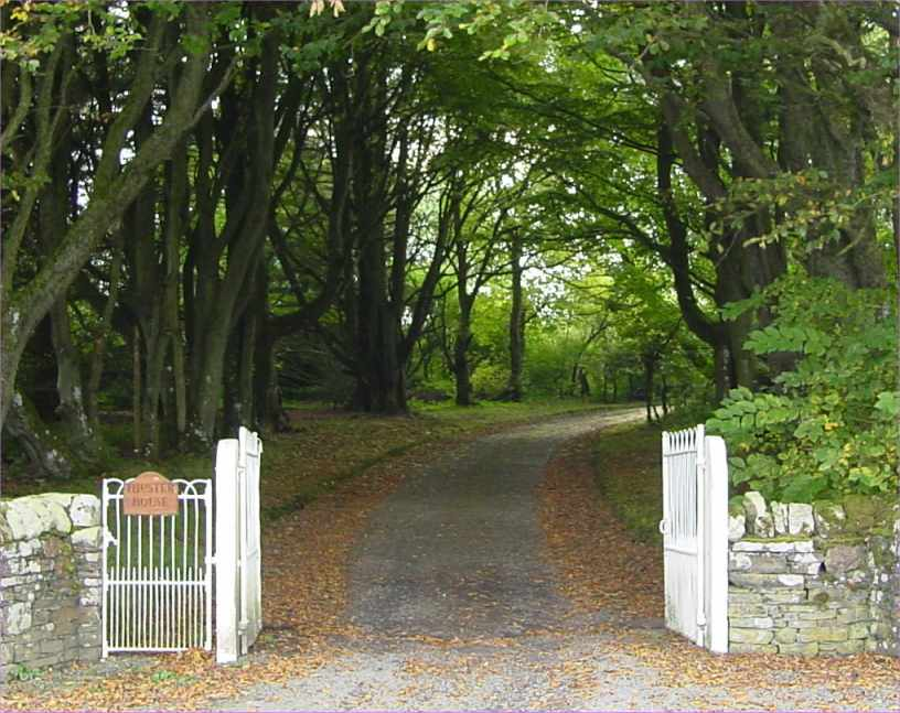 Photo: Gate and Main Driveway