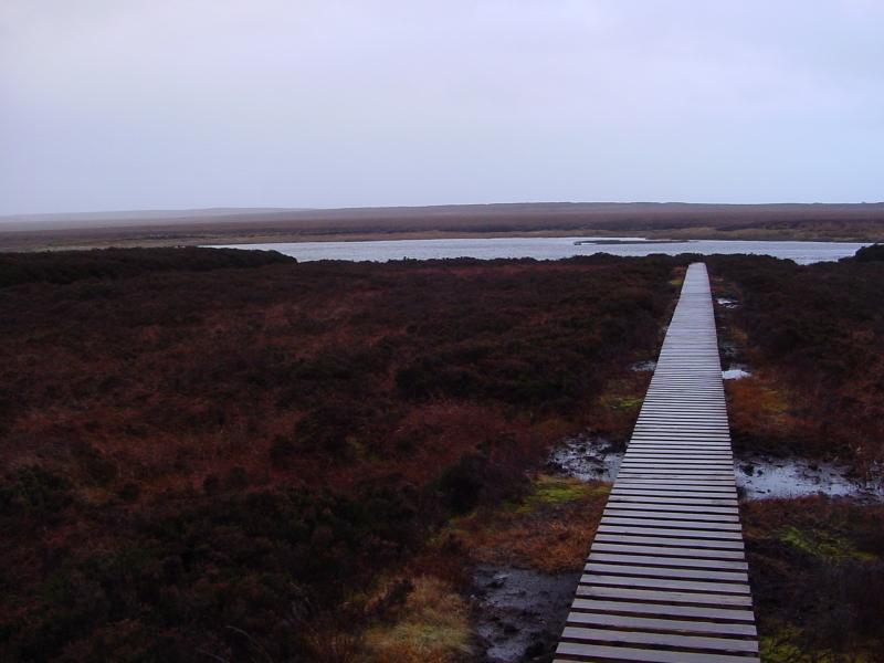 Photo: Loch Beg