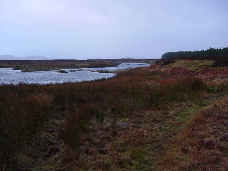 Photo: Thurso River At Loch Beg