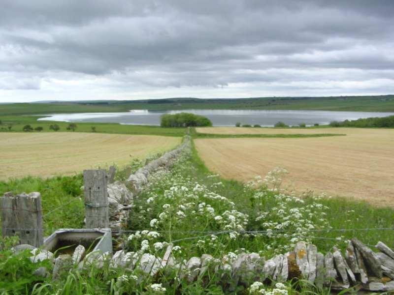 Photo: Loch Scarmclate
