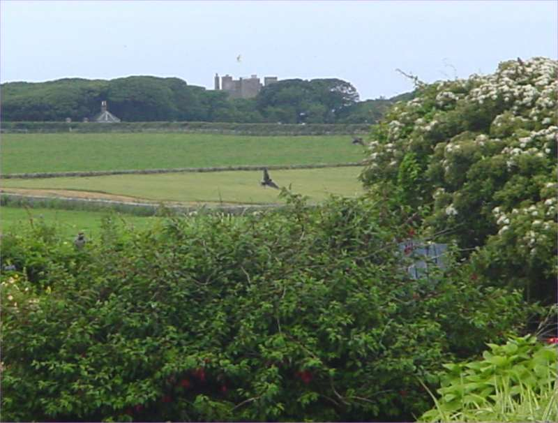 Photo: Castle Of Mey In The Distance