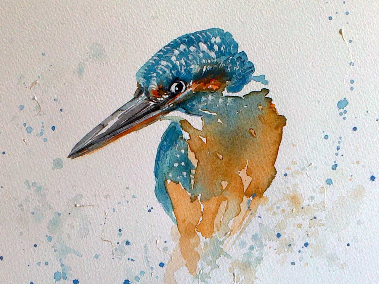 Photo: Kingfisher - Elaine Rapson-Grant