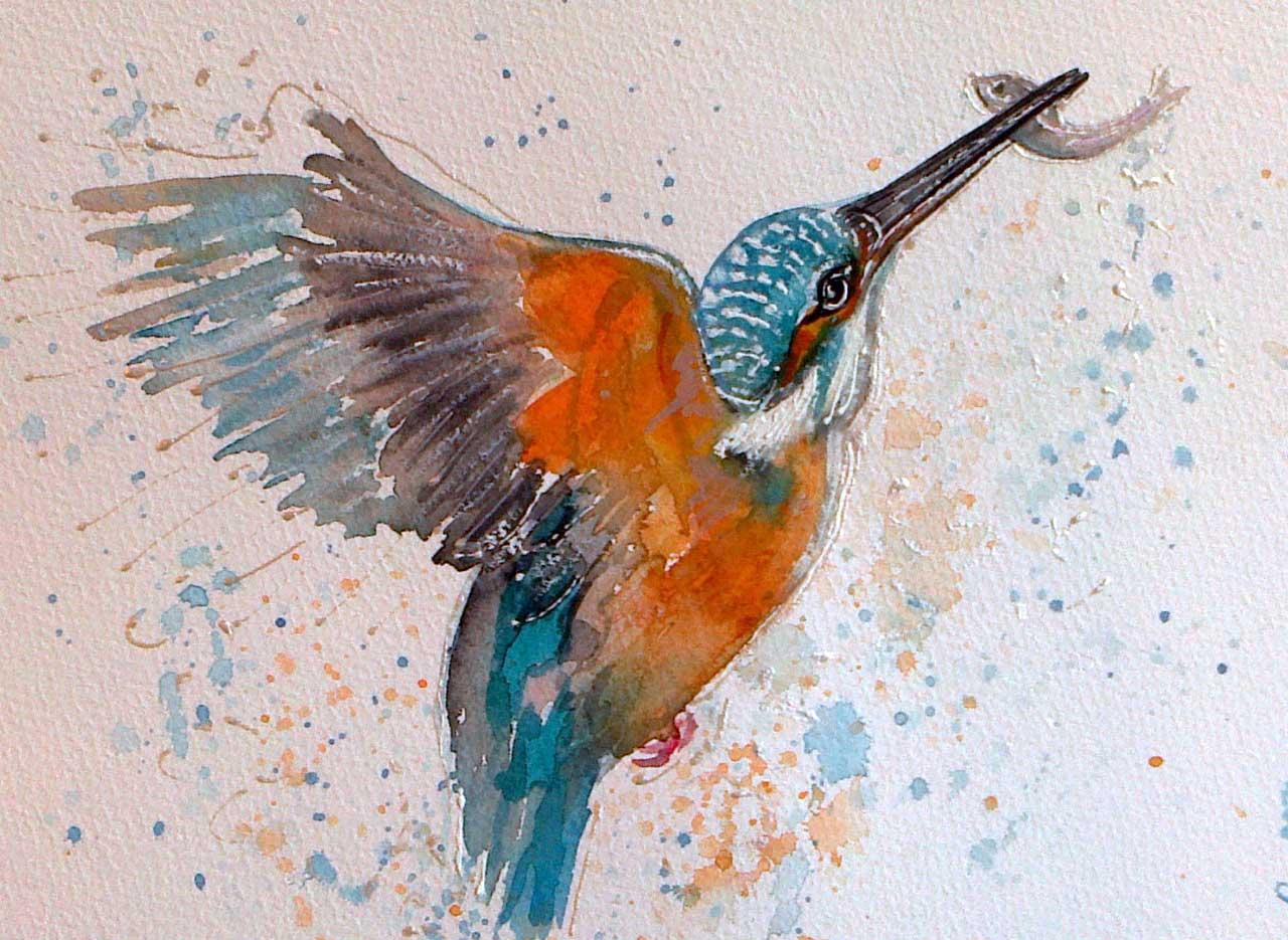 Photo: Kingfisher and Fish - Elaine Rapson-Grant