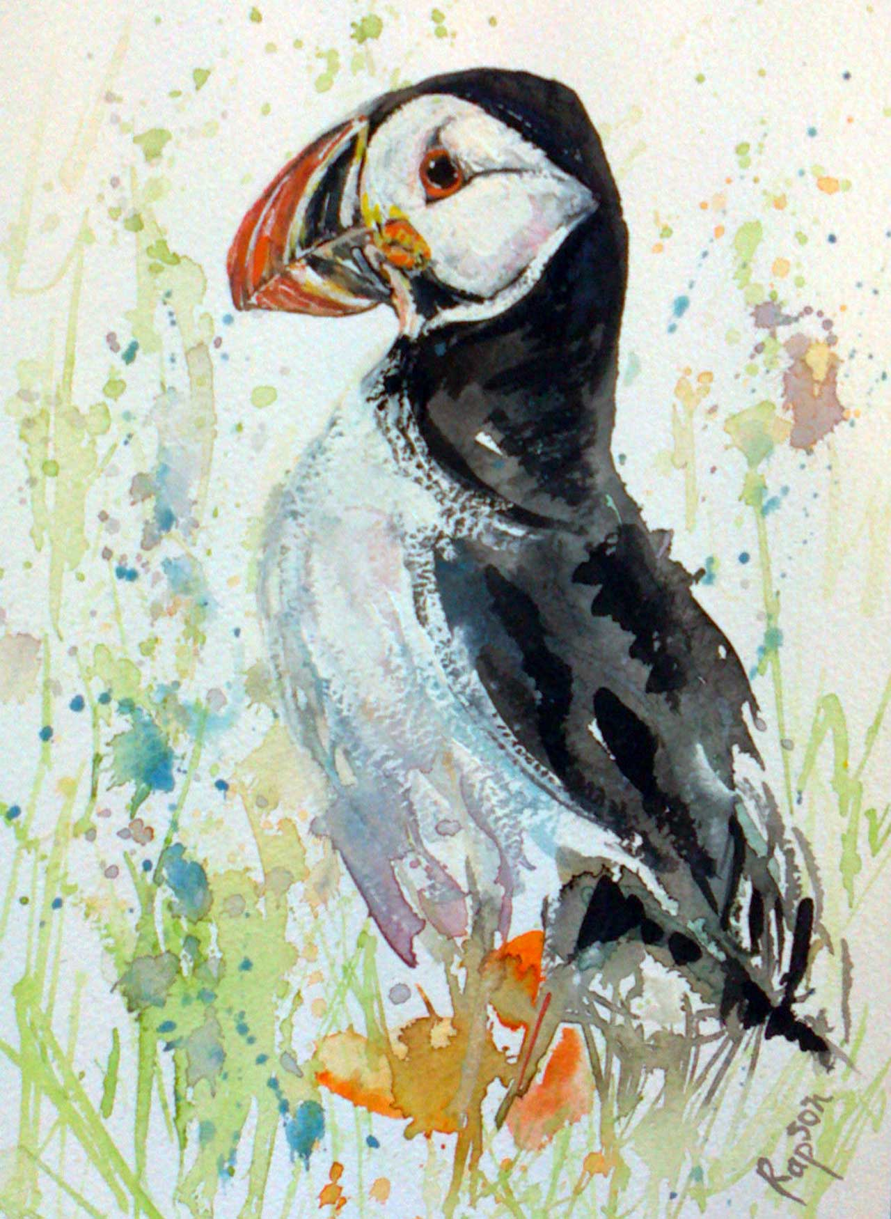 Photo: Puffin - Elaine Rapson-Grant