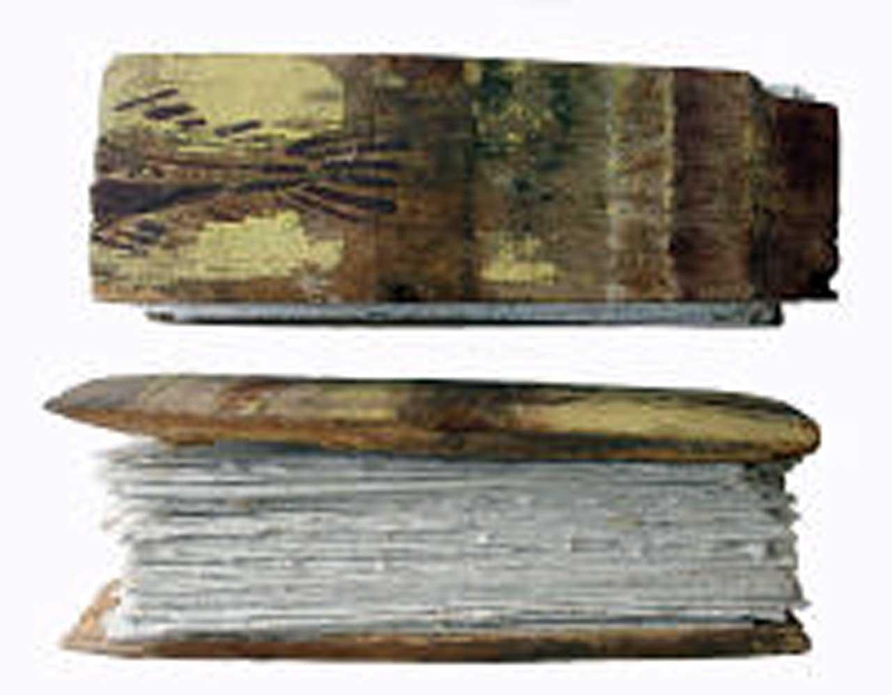 Photo: Joanne B Kaar - Driftwood Fish Book