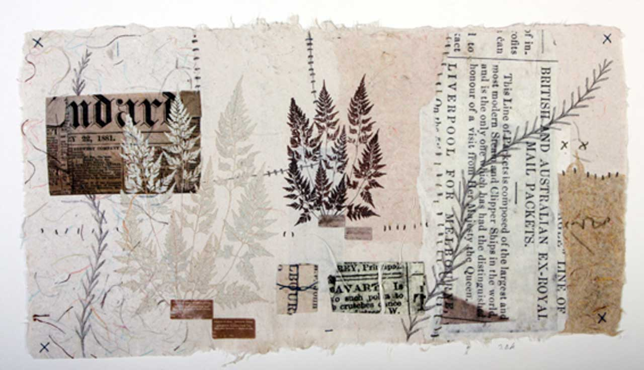 Photo: Joanne B Kaar - 9 Paper Wrappers And Herbarium Sheets