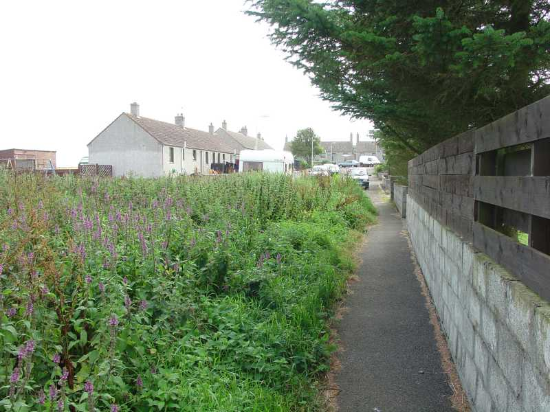 Photo: Footpath Behind Thura Place, Bower