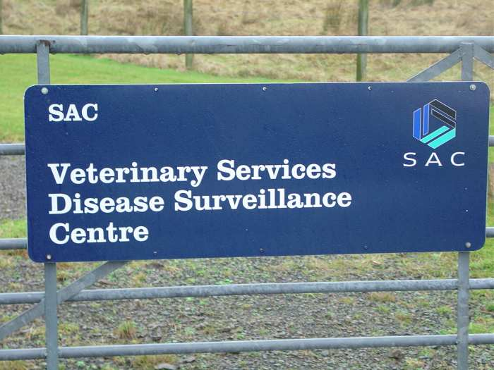 Photo: Scottish Agricultural College Disease Surveillance Centre