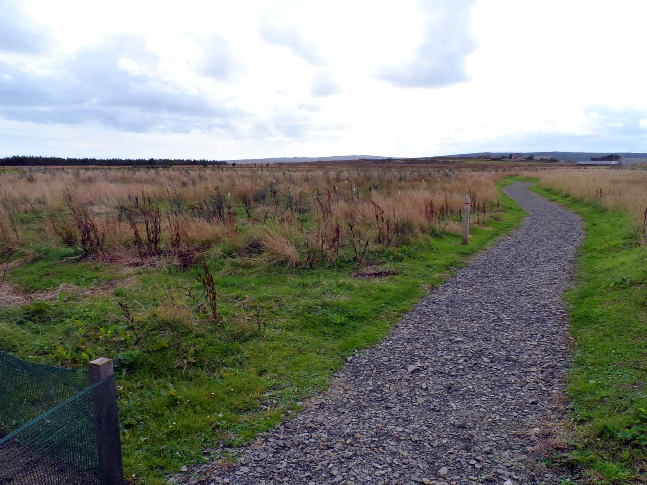 Photo: Newtonhill Community Woodland, Caithness