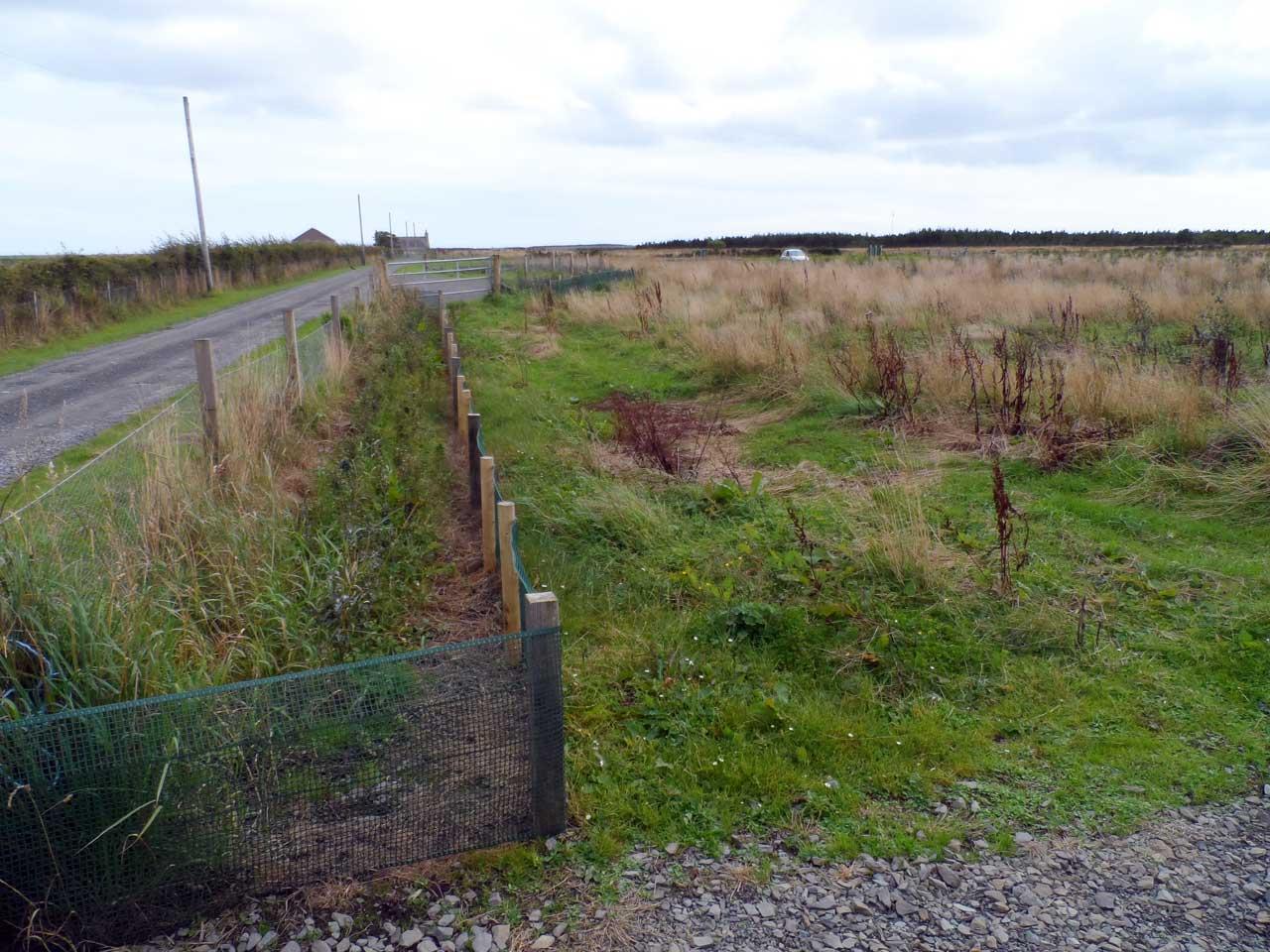Photo: Newtonhill Community Woodland, Caithness