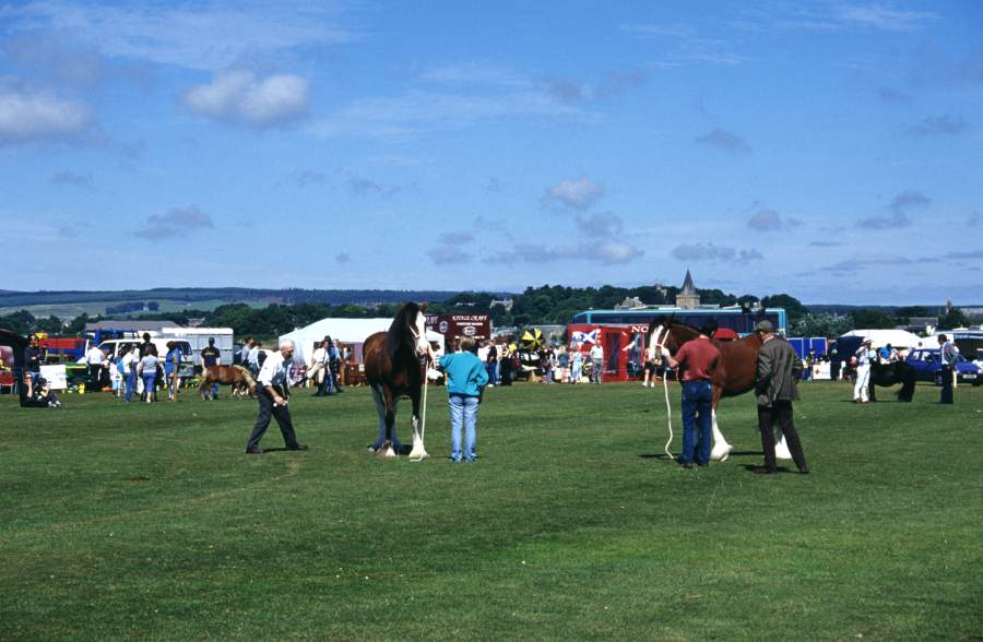 Photo: Dornoch County Show