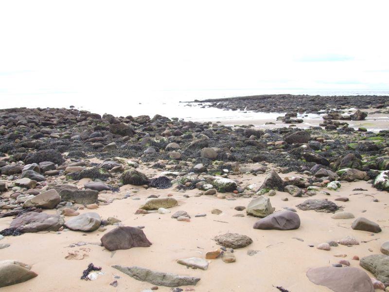 Photo: Caithness Field  Club - Bora Beach Exploring The Salt Industry
