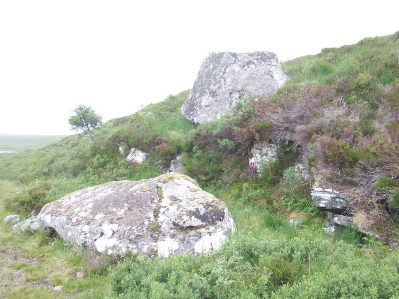 Photo: Caithness Field  Club - Cup and ring stone - 6 July 2008