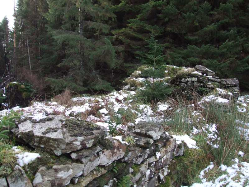 Photo: A Kiln At Golsary - Rumster Forest 21 January 2007