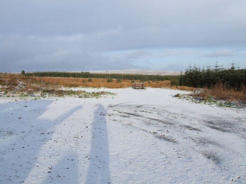 Photo: Caithness Field  Club - Rumster Forest 21 January 2007