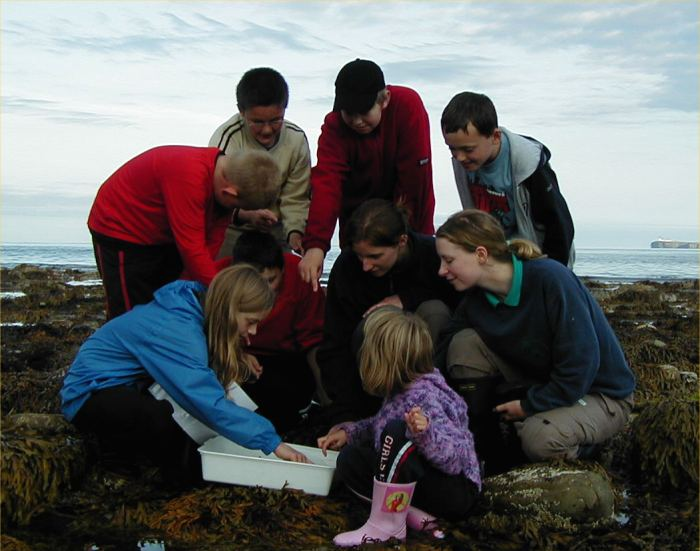 Photo: Highland Ranger Marina Finlayson Shows Children The Life In The Rock Pool
