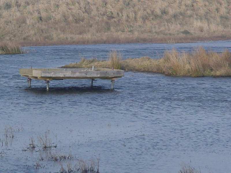 Photo: St Johns Loch Pond