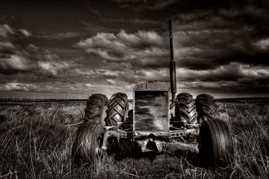 Photo: The Wind Harvester - Martina Cross
