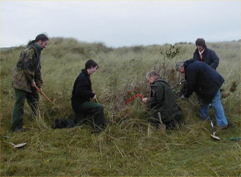 Photo: Caithness Volunteers Helping To Maintain Primula Scotica
