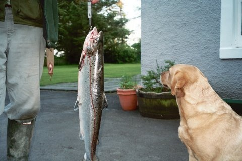 Photo: Christopher Brocklebank_Fowler Caught The First Fish At Forss In 2007