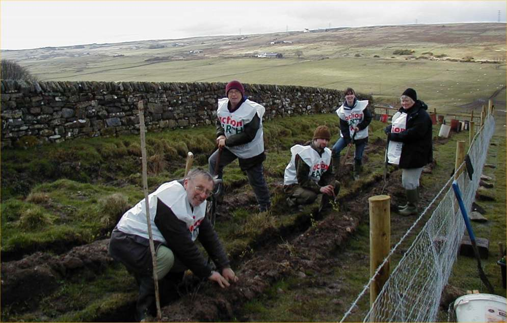 Photo: Volunteers Plant New Hedging At Guidebest