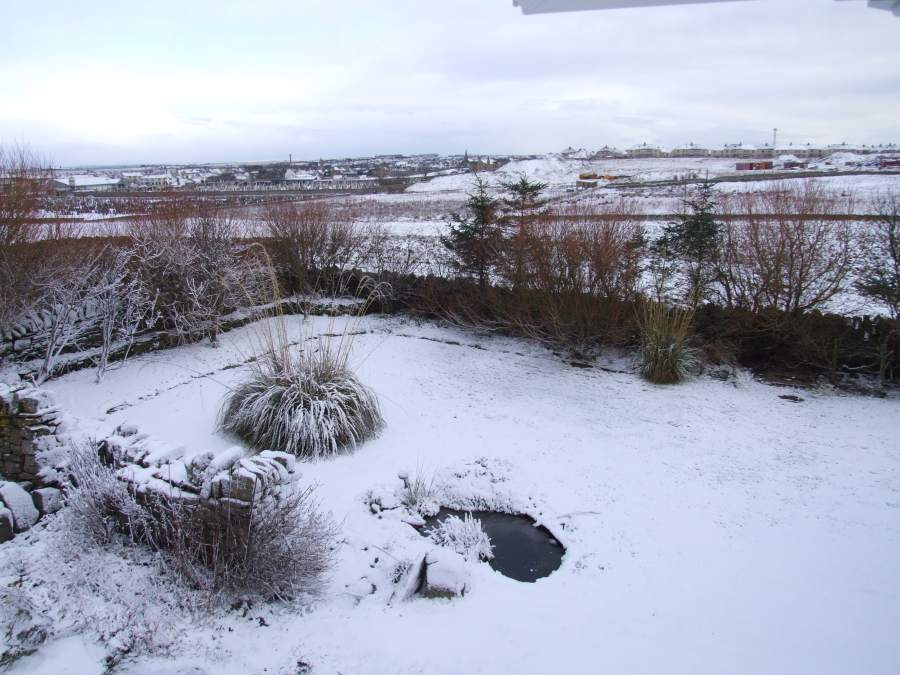 Photo: Snowy View From Bill's Window In Wick