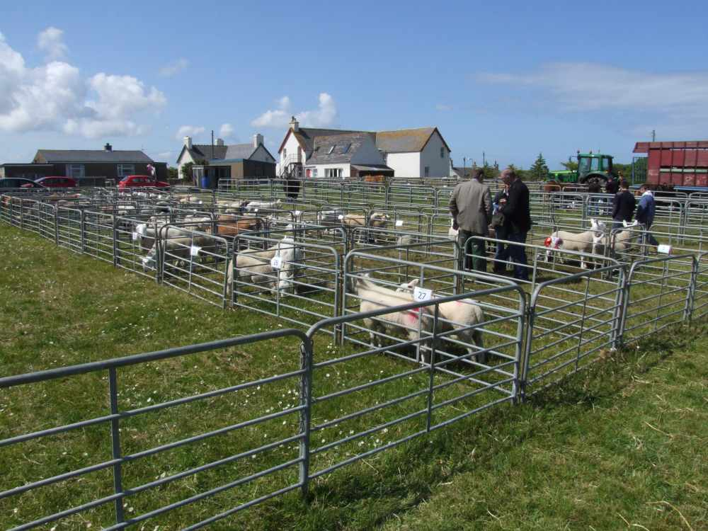 Photo: Canisbay Show 2009