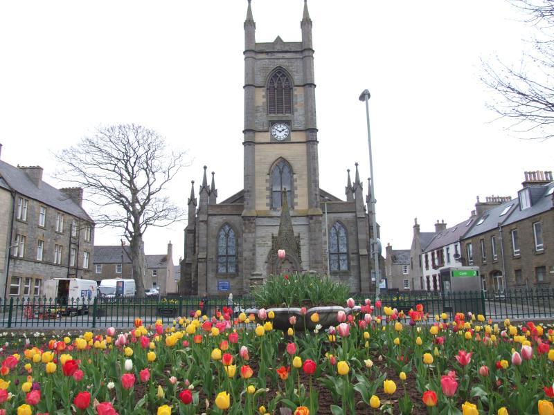 Photo: Tulips Bring A Splash Of Colour To Thurso