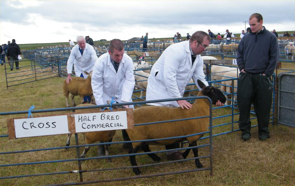 Photo: Caithness County Show 2010