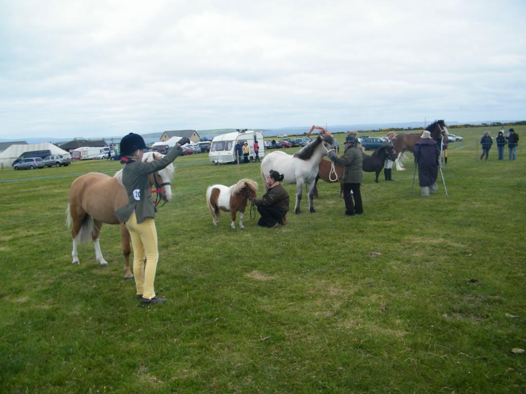 Photo: Canisbay Show 2010