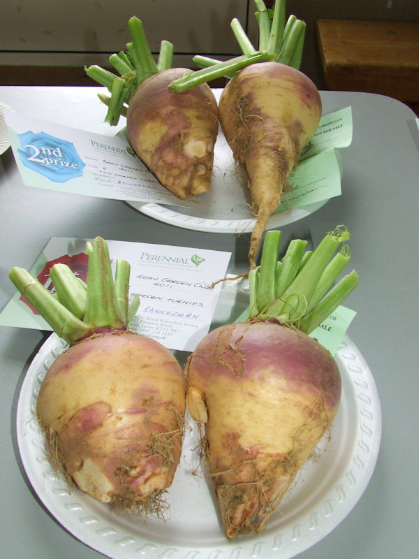 Photo: Reay Horticultural Show 2011