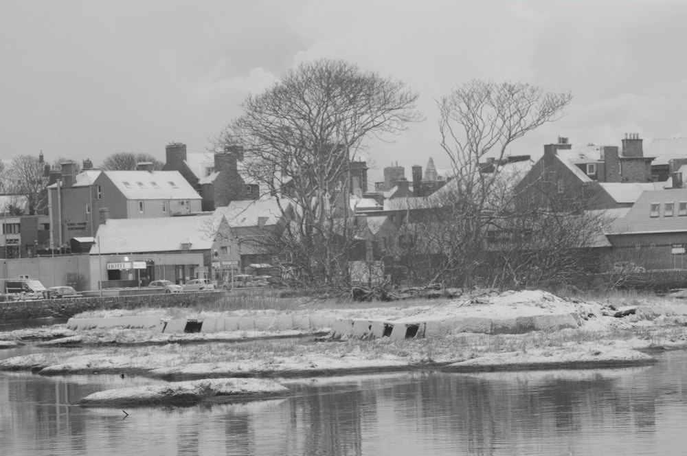 Photo: Snow In Wick