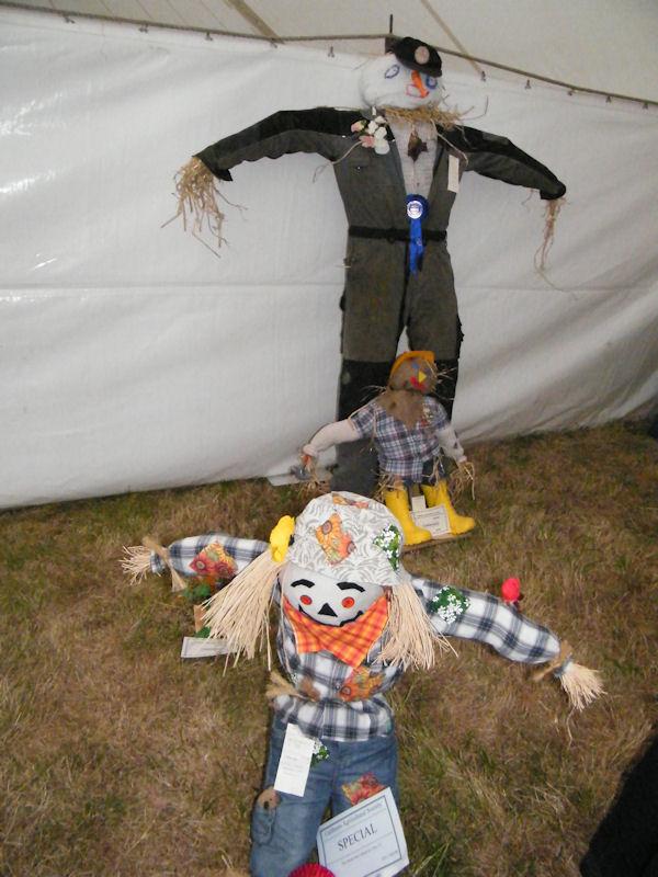 Photo: Caithness County Show 2011