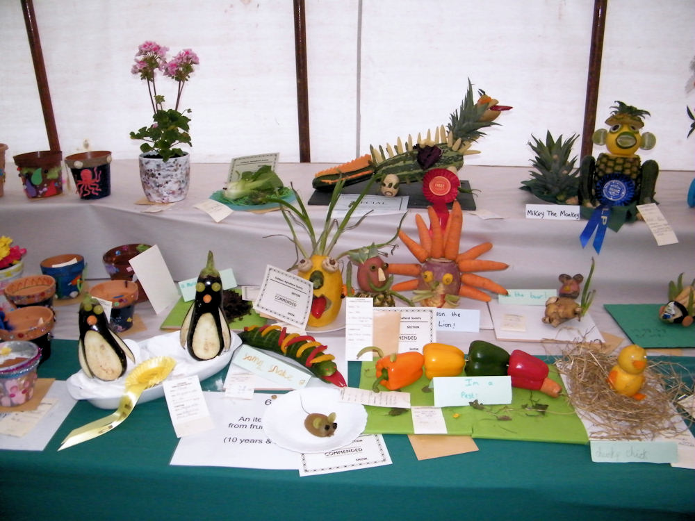 Photo: Caithness County Show 2011