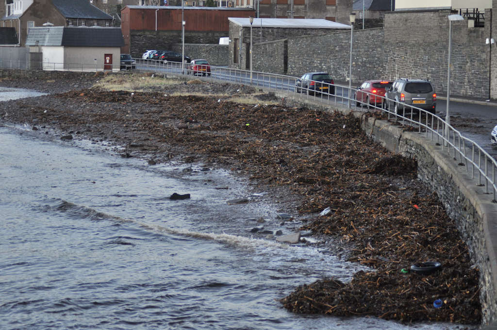 Photo: Seaweed at Wick After Storms