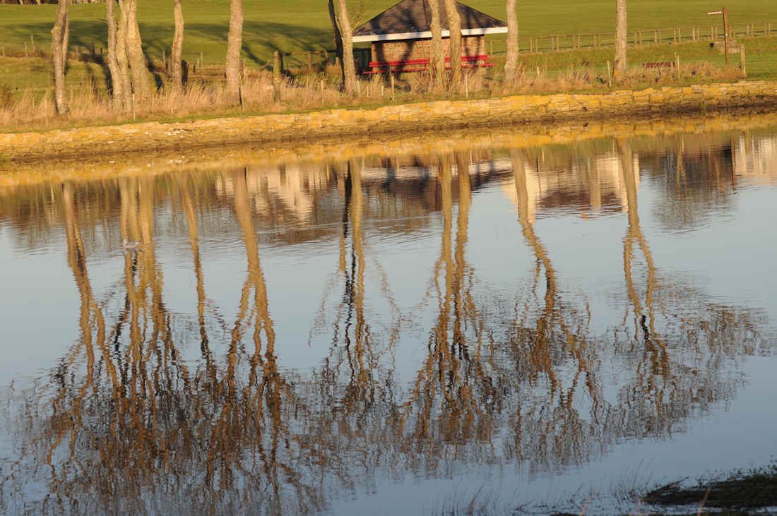 Photo: Reflections On Caithness