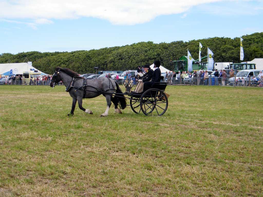 Photo: Caithness County Show 2012