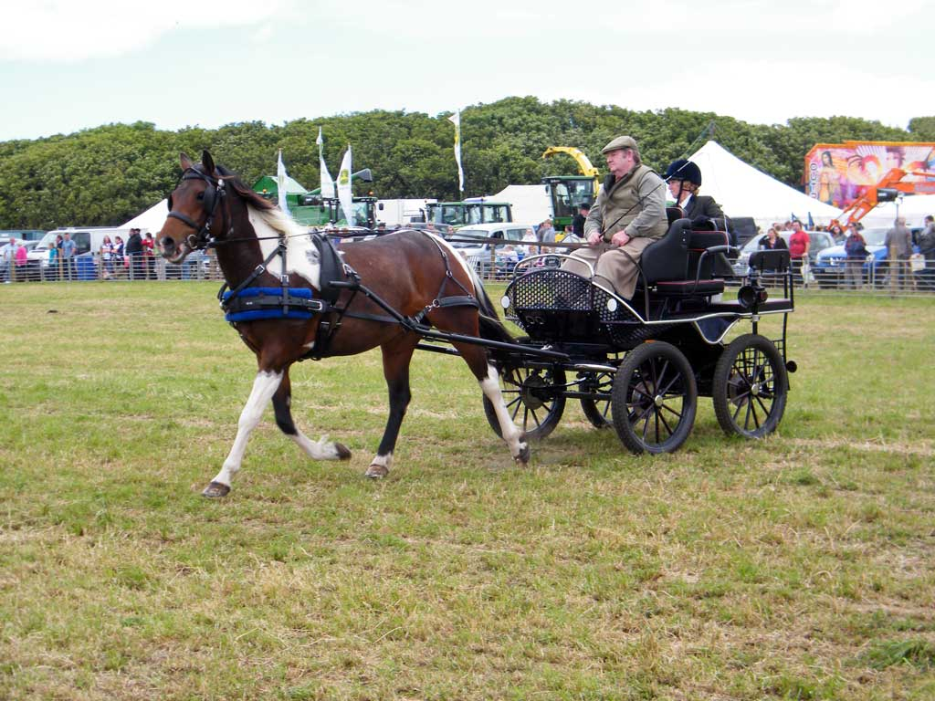 Photo: Caithness County Show 2012