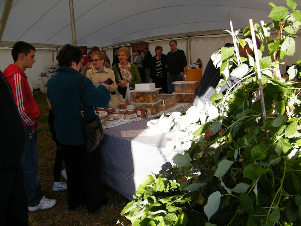 Photo: Friday At Caithness County Show 2012