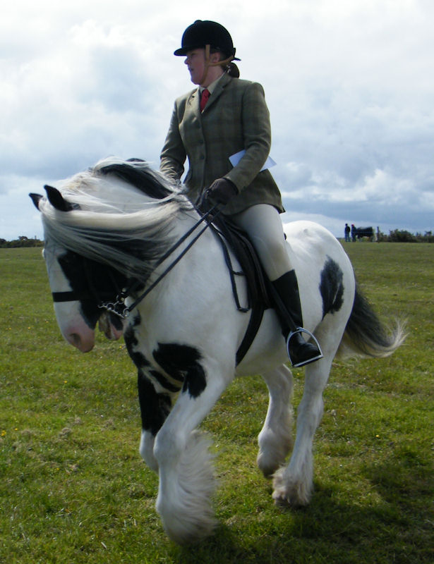 Photo: Canisbay Show 2012