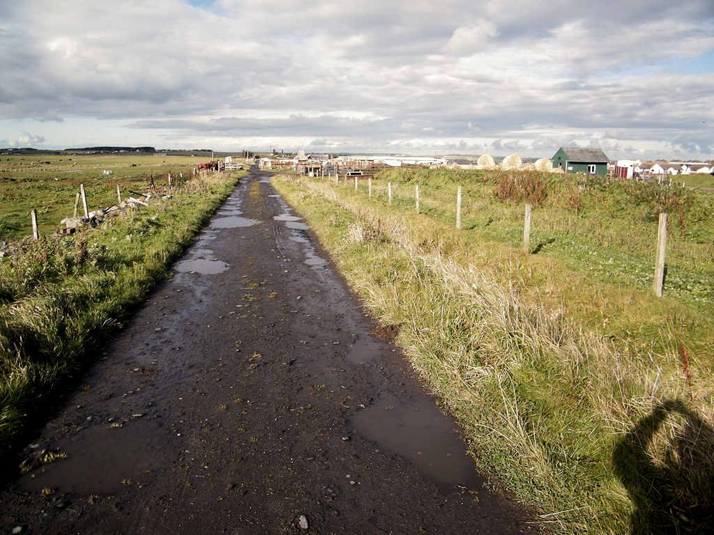 Photo: Walking At Wick