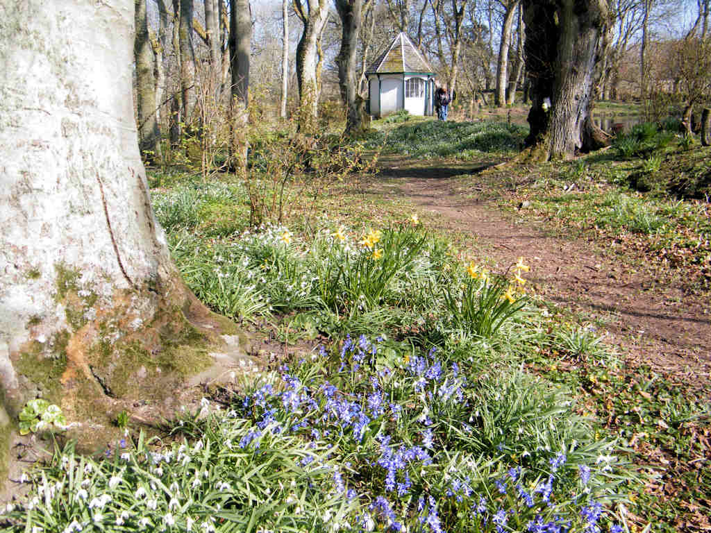 Photo: Springtime At Thrumster House
