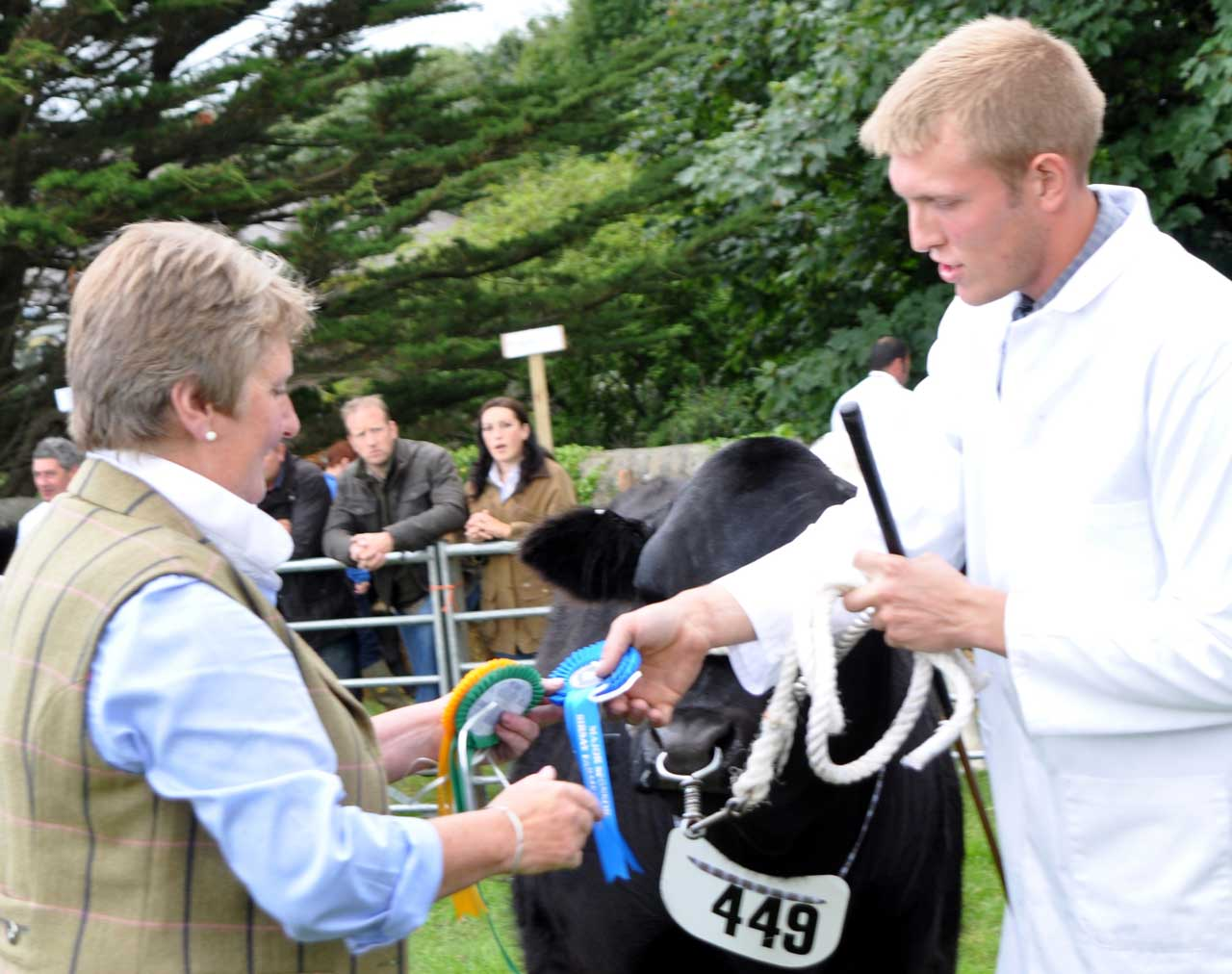 Photo: Orkney Show 2013