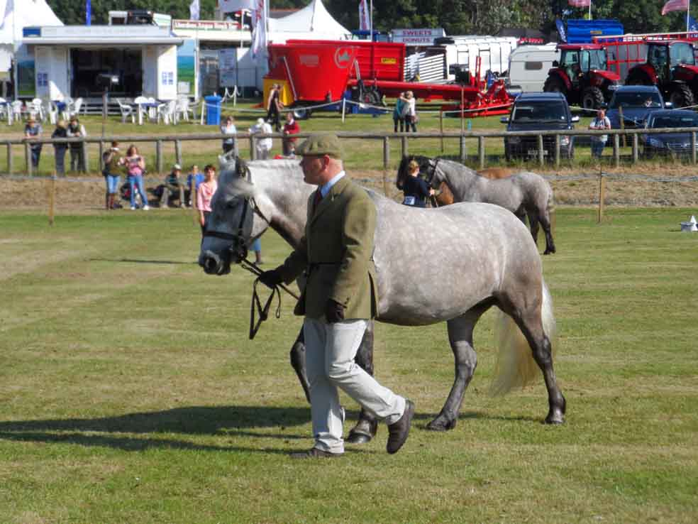 Photo: Caithness County Show 2013 - Saturday