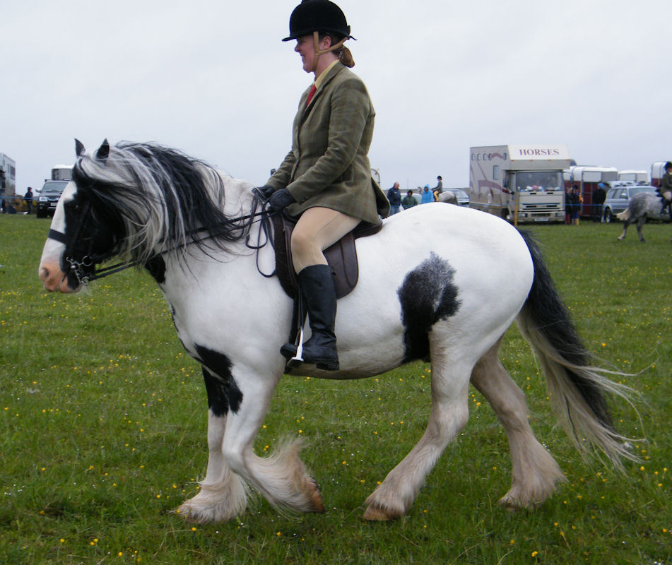 Photo: Canisbay Show 2013