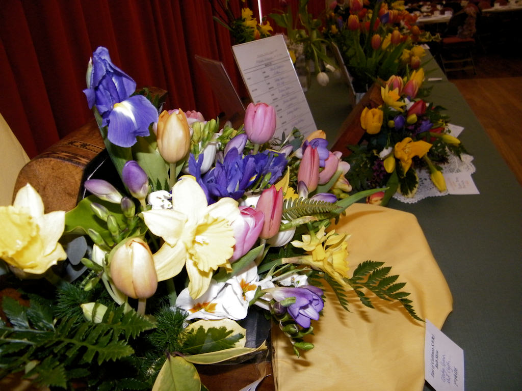 Photo: East Caithness SWRI Bulb Show 2013