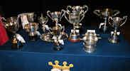SWRI East Caithness Bulb Show Cups