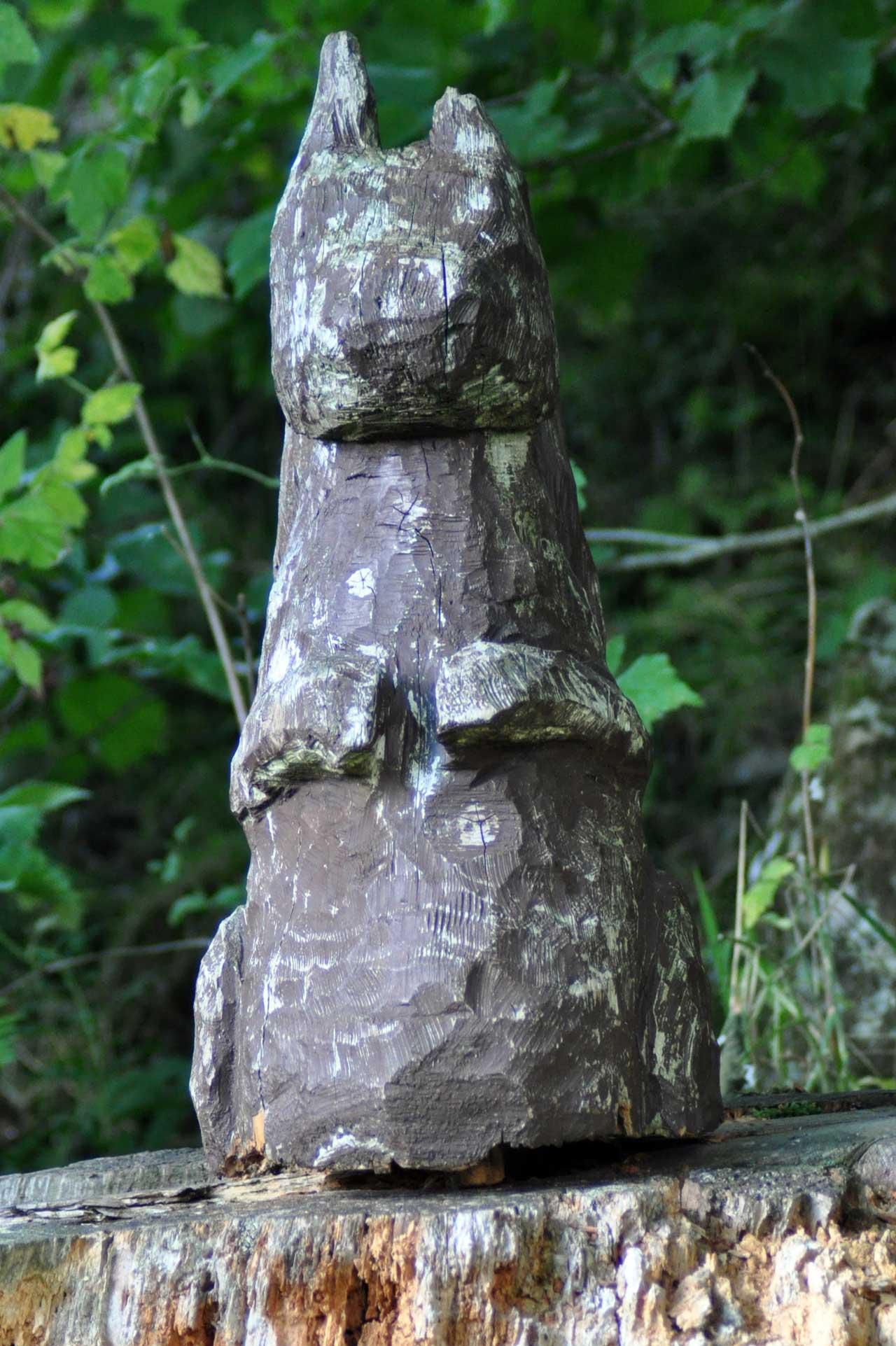 Photo: Skelbow Forest Walk