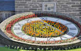 Floral Clock at Wick