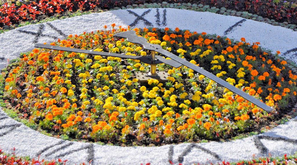 Photo: Floral Clock At Wick Looking Great